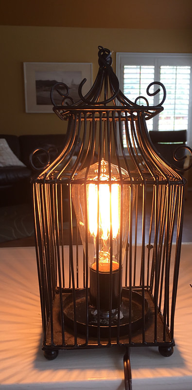 A photo of a birdcage lamp by Stephen Harriger