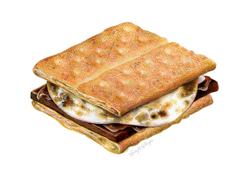 A drawing of a s'more