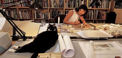 Studio Sunday: Maya Lin - Artist Run Website