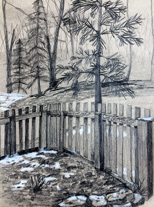 A drawing of a backyard with a fence