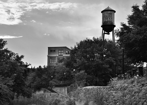 A black and white photo of a water tower in overgrowth