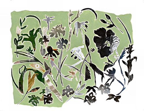 An artwork with cutout shapes of plants