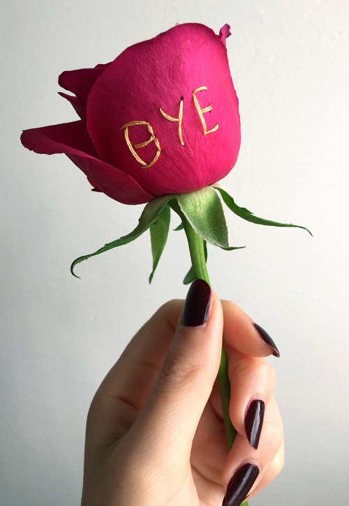 A rose with the word BYE embroidered on it
