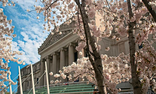 An exterior photo of the Brooklyn Museum
