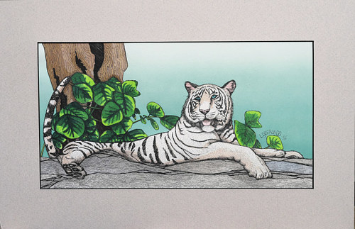 A watercolor painting of a white tiger