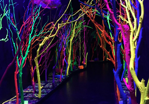 A photo of the interior of a new immersive installation by Meow Wolf