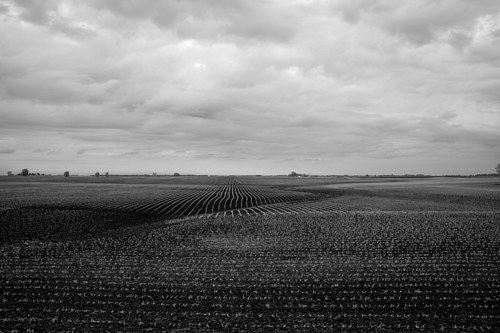 A photo of a field in Illinois