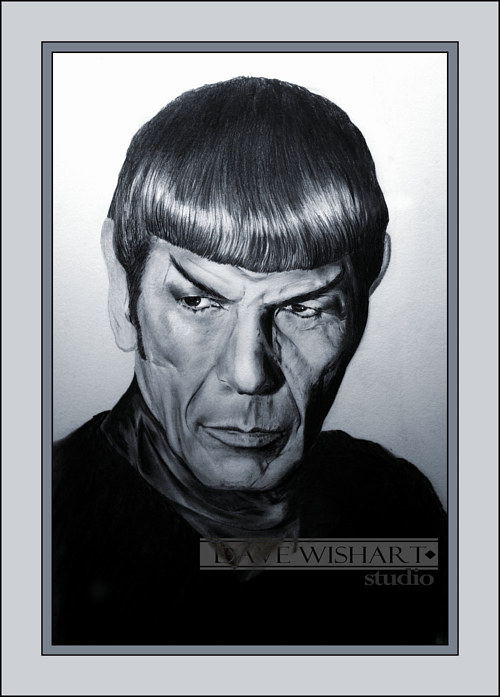 A portrait of Spock from Star Trek