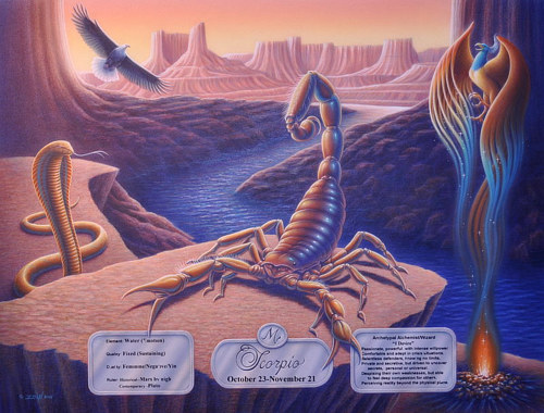 A painting of the Scorpio sign from the zodiac