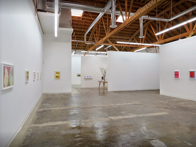 An installation view of a Merion Estes show at CB1 Los Angeles