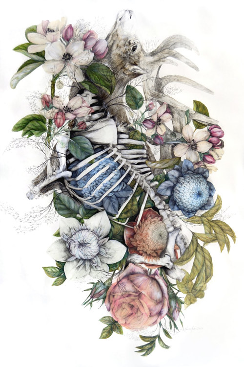 A mixed media artwork with a deer skeleton and floral elements