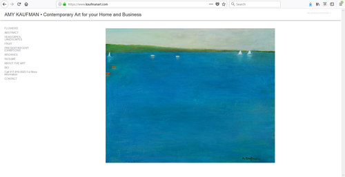 A screen capture of Amy Kaufman's art website
