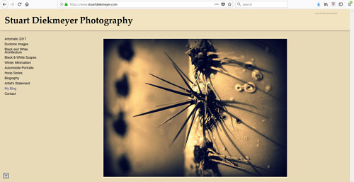 A screen capture of Stuart Diekmeyer's art website