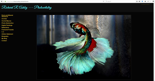 A screen capture of Richard R. Ashby's art portfolio website