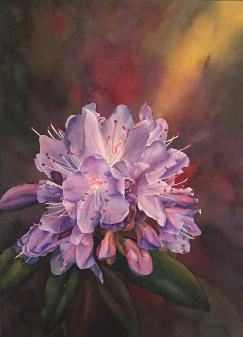 A watercolour painting of a purple rhododendron flower