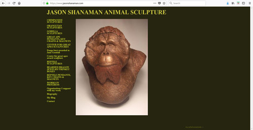 The front page of Jason Shanaman's art website