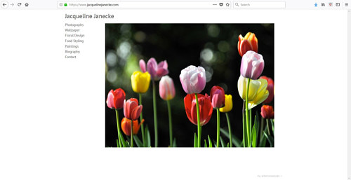 A screen capture of Jacqueline Janecke's art website