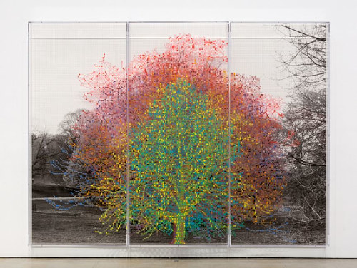 An acrylic and inkjet work depicting a tree