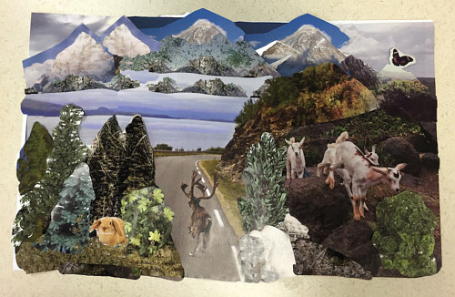 A collage with scenes of landscapes and animals