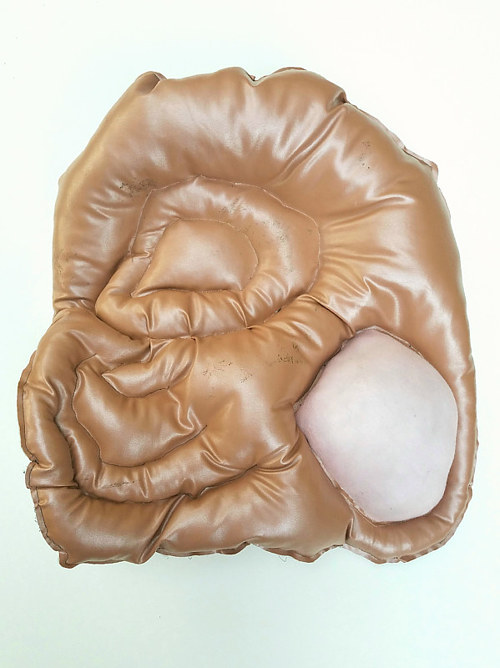 A plush piece of upholstery with an amorphous form