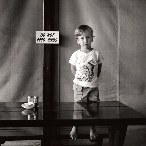 A photo of a boy standing near a sign warning against feeding birds