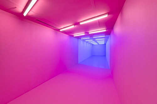 A photo of an art installation consisting of a hallway lit in bright pink and blue tones