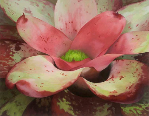 A painting of a close-up view of a bromeliad plant