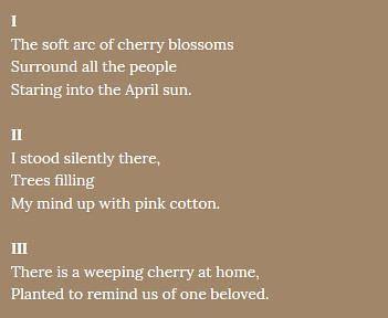 A sample from a poem about a cherry tree