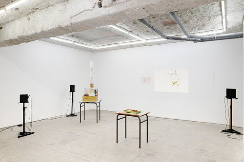 An installation view of an exhibition featuring found objects and wall installations