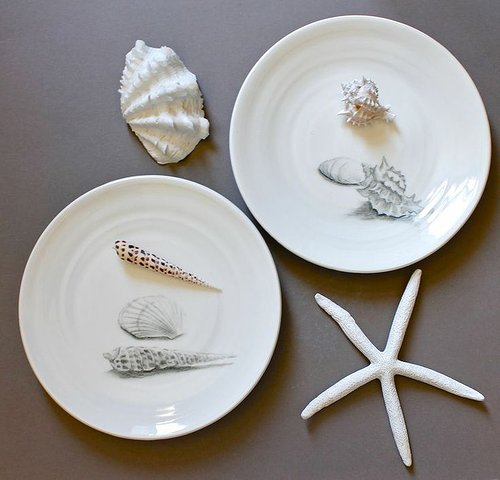 Drawing of seashells on plates