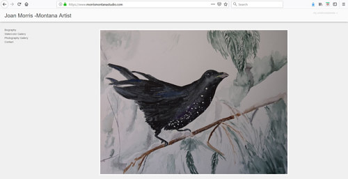 The front page of Joan Morris' art portfolio website