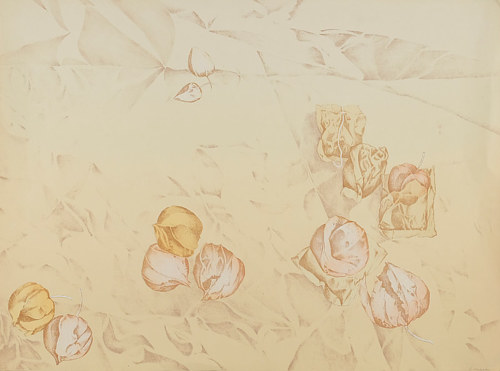 A watercolour painting with minimal colour and flower buds