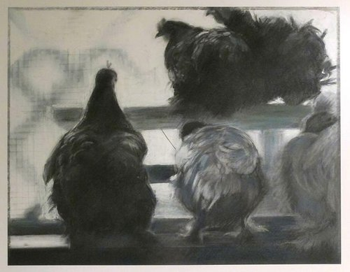 Charcoal drawing of five chickens