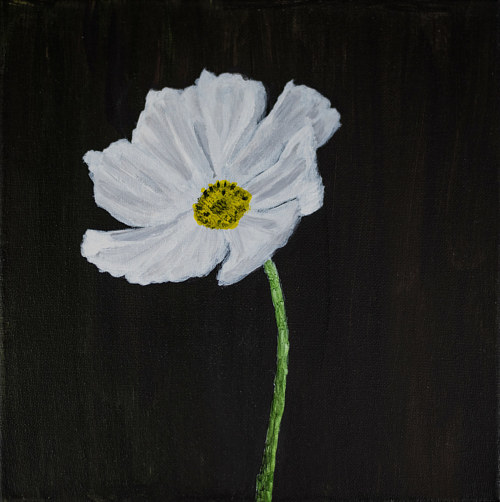 A painting of a white flower on a black background