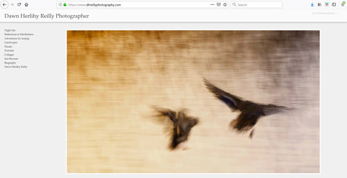 The front page of Dawn Herlihy Reilly's photography portfolio website