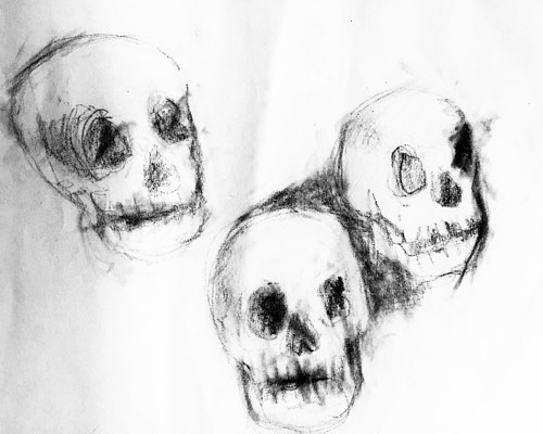 A study sketch of a few skulls