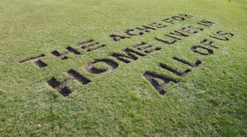 A line of text stamped into a grassy field