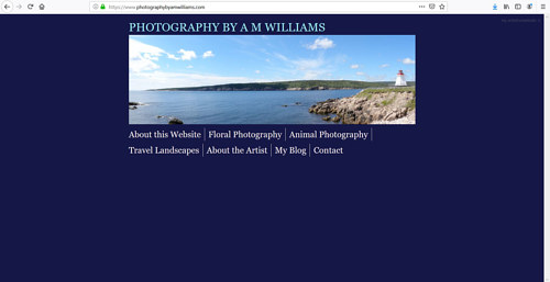 The front page of A.M. Williams' art portfolio website