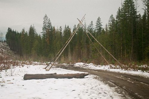 four logs leaned against each other overtop of a road