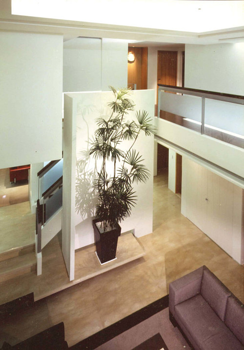A view of an interior with a prominent house plant
