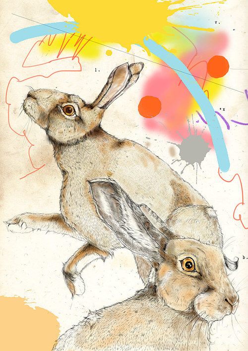 A drawing of two hares on an abstracted background