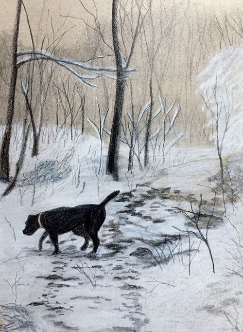 A drawing of a black dog in a snowy landscape