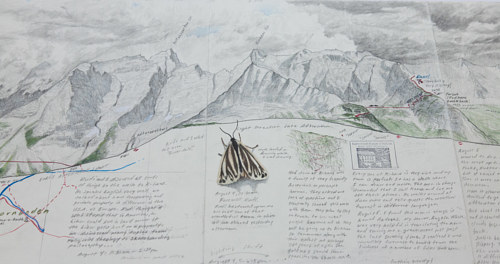 A detail of a field drawing made in the Austrian Alps