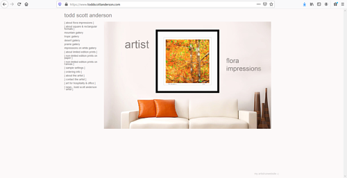 A screen capture of Todd Scott Anderson's art portfolio website