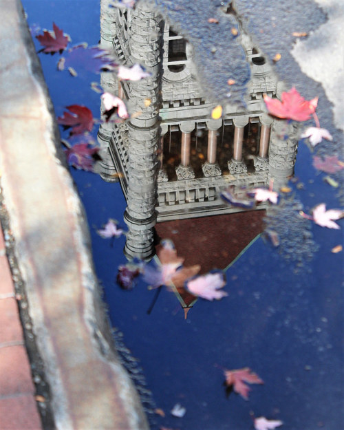 A photo of a city hall roof reflected in a puddle