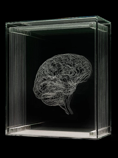 A portrait of the brain of artist Angela Palmer
