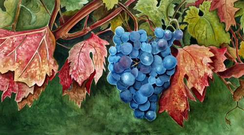 A painting of a blue grapes on a vine