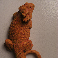 Painting Bearded Dragon magnet or wall hanging (terra cotta finish) by Jason  Shanaman