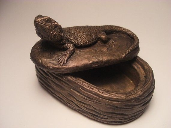 old bearded dragon box by Jason  Shanaman