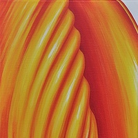 Oil painting Tulip Flame by Sue Ellen Brown